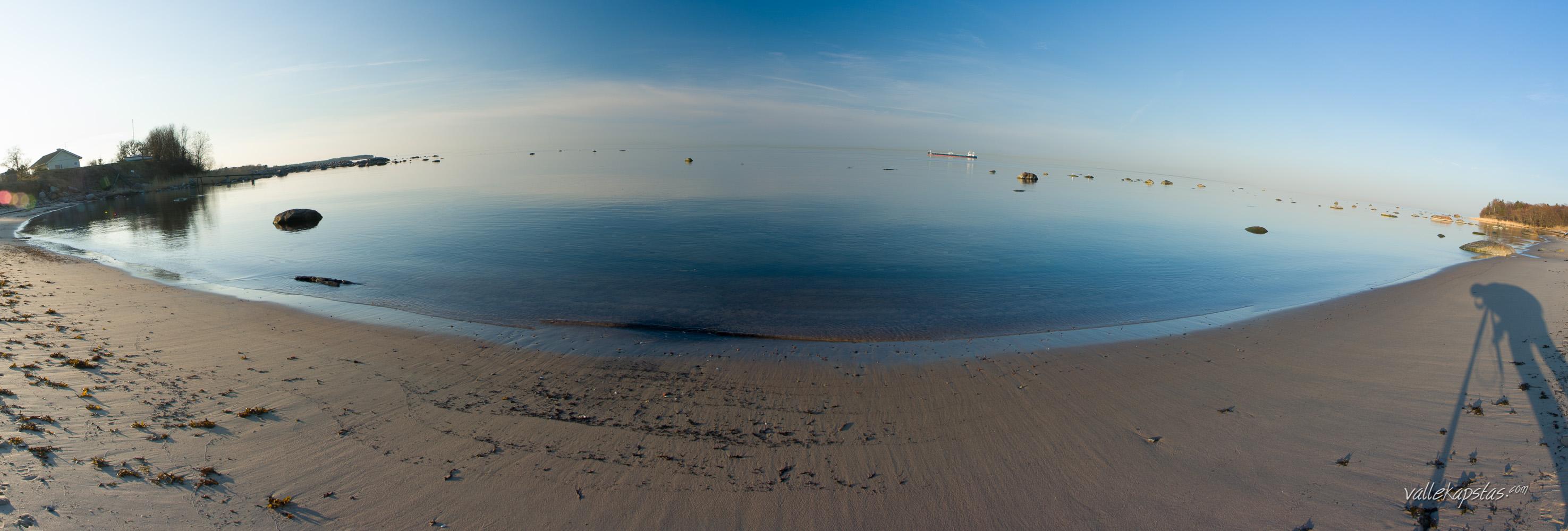 Shore & Selfie